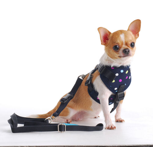 puppia soft harness size guide